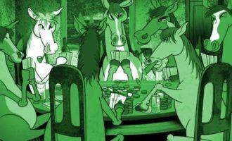 HORSE покер – правила игры